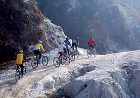 Adventure on Wheels: Mountain Biking