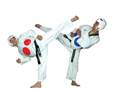 The Martial Art of Taekwondo Part 1
