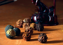 A Story of the Super Seed: Rudraksha