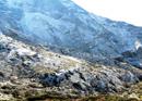 Yarsagumba: Himalayan Gold Rush