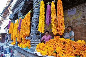 Rituals that Blossom