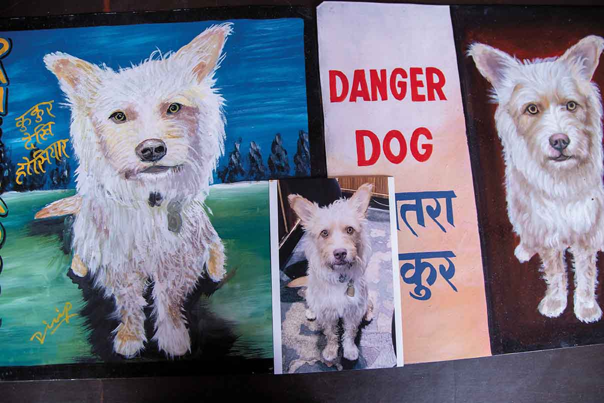 Nepal Art Dogs: Rediscovering the disappearing artwork